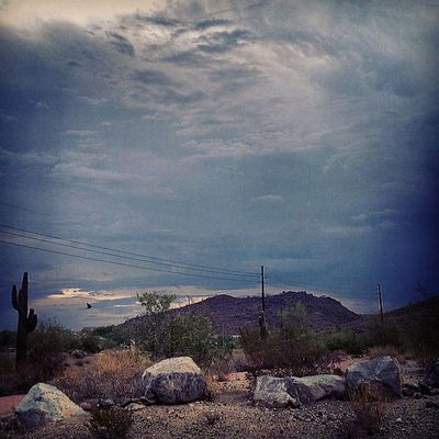 What a humid and overcasty.day! i love overcast days! :) Can't say the same for the humidity tho... Instagramaz Desertlivin Cactus Rocks Nature Overcast Mornings Glendaleaz Arizonahighways Instadesert Instagramhub Cloudydays Skyporn Mountain Sce Powerlines Crackofdawn Goodmorning Arizona @arizonaskies Noedit OriginalPhoto Igersphx Igarizona Instasky Awesomeview :)