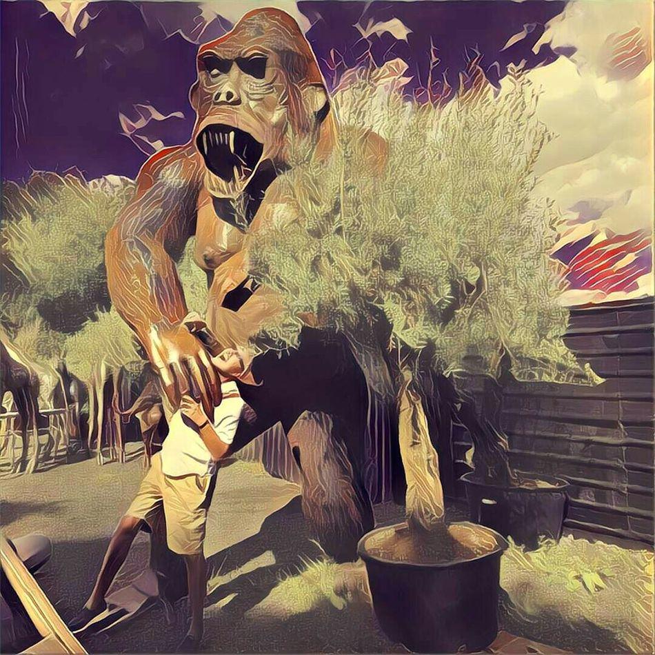 King kong kicked my ass!!! King Kong Sculptures Gorillas Fun Funny Igers Igersworldwide