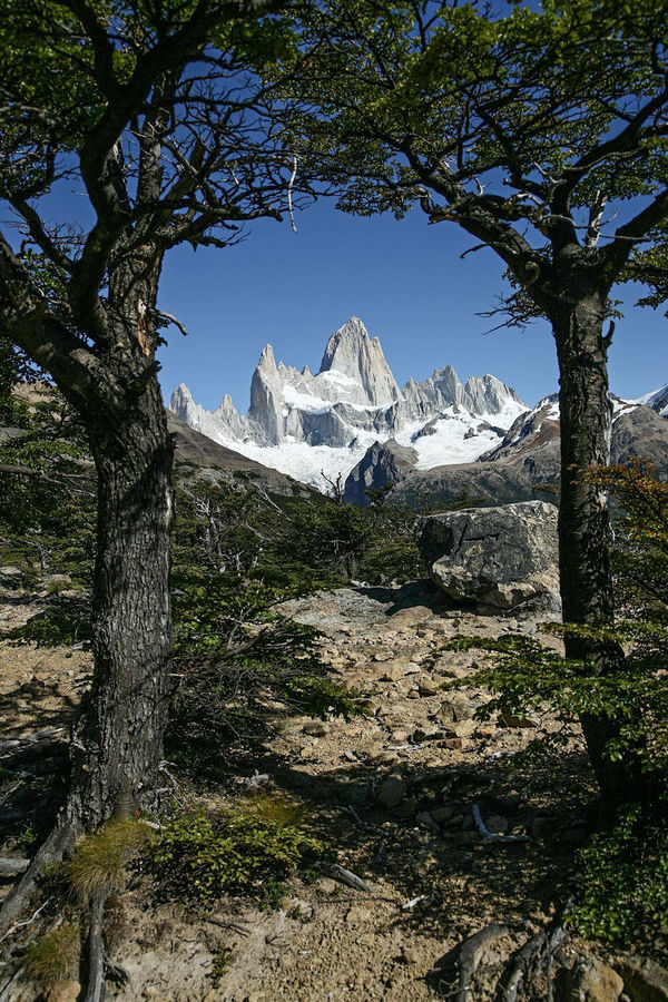 Fitz Roy Mountain Fitz Roy Argentina For Tourists Mountain Travel Destinations Landscape Mountain Range Outdoors Vacations Mountain Peak Beauty In Nature