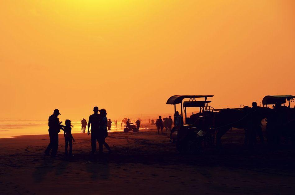 Beautiful stock photos of silhouette, Beach, Clear Sky, Day, Full Length
