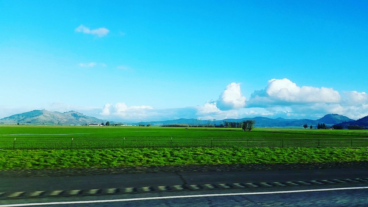 agriculture, beauty in nature, field, nature, farm, landscape, mountain, growth, rural scene, green color, sky, scenics, tranquil scene, cultivated land, crop, tranquility, day, no people, mountain range, cloud - sky, outdoors, blue, freshness