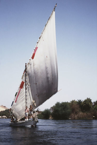 Felucca near Assuan (1992) 1993 Analogue Photography Nile River Clear Sky Day Island Mast Mode Of Transport Nature Nautical Vessel No People Outdoors Sailboat Sailing Scan Sea Sky Transportation Tree Water Waterfront