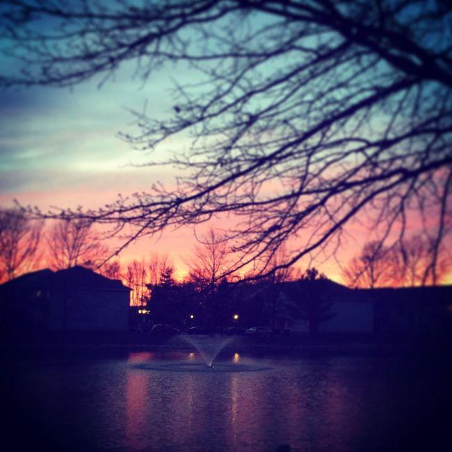 Lifeunderanoaktree Mypatio Mypond Ilovetrees Sunset Indiana