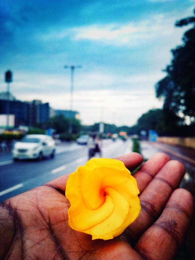 After The Rain Street Photography On The Road Nature Photography Mobile Photography Hello World EyeEm Nature Lover Hello World ✌ Girl Love♥