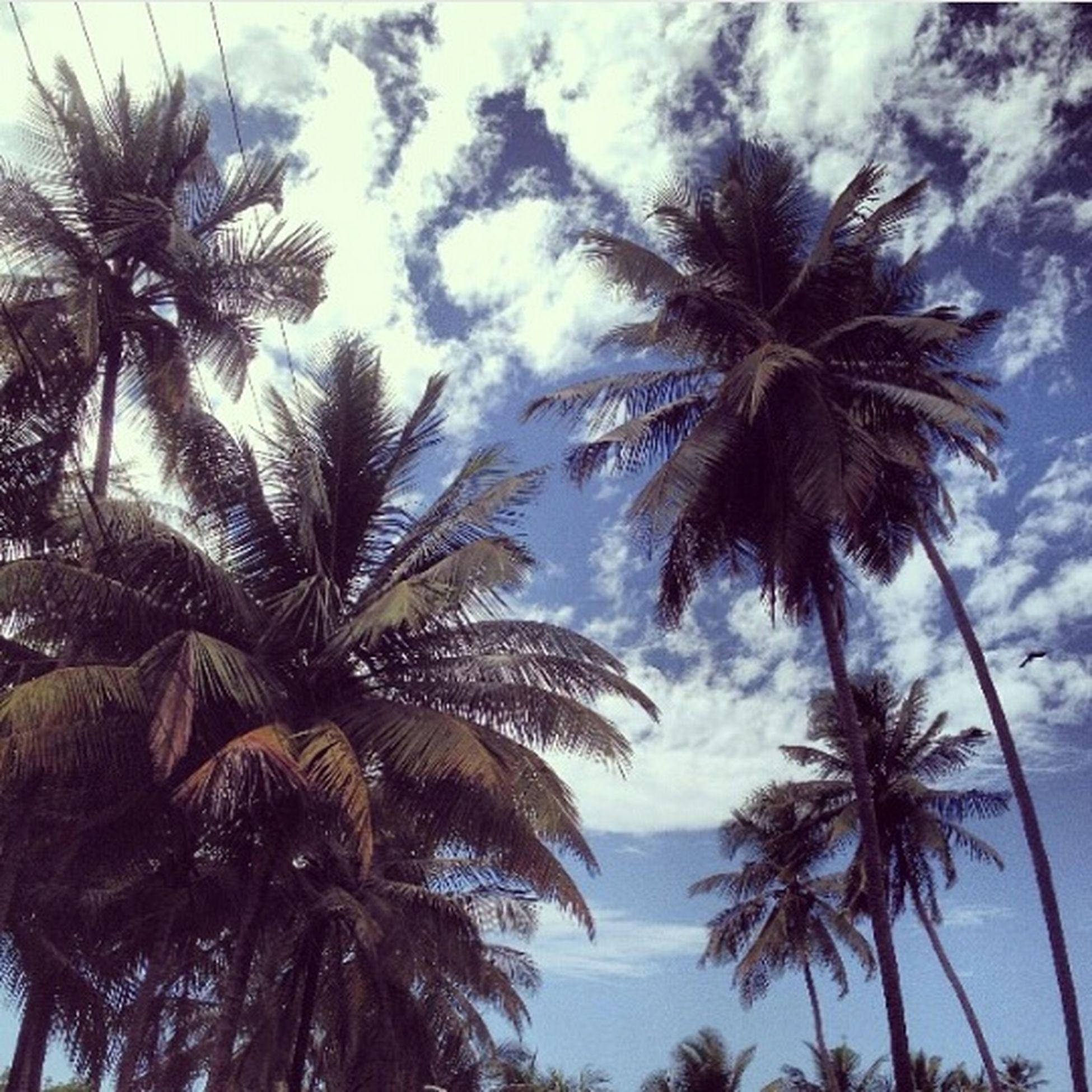 Pams Sky Clouds Goa Freedom Happy