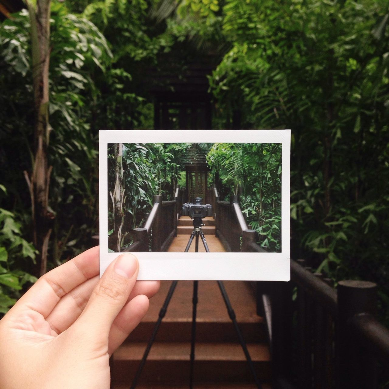 Fromwhereitookit  Fujifilm Vscocam Resort EyeEm Bestsellers