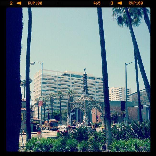 106 Hollywood Bl