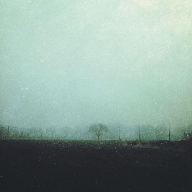 Awaiting spring Fog EyeEm Best Shots Mextures Edited