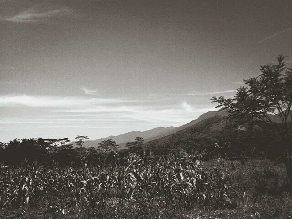 entah dimana ... Blackandwhite Cant Help It, Its Just My View..