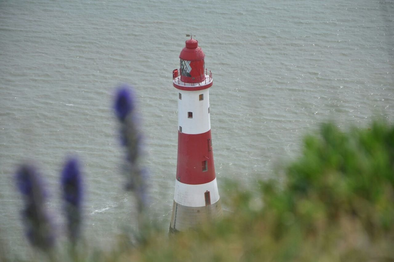 Nikonphotography Architecture Built Structure No People Outdoors Day Lighthouse, Beacon, Light, Guide, Tower, Warn, Beachy Head Cliffs Plants Red White Color Water Sea Cliffs And Water Sussex Uk