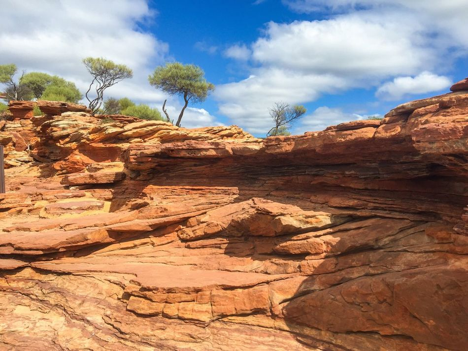 Sandstone Cliffs: Western Australia Sandstone Bluffs Red Landscape_Collection Nature Photography Australia Western Australia Land Plants Rocky Geological Sandstone Travel Photography Kalbarri Nature's Design Nature Textures Rock Landscape Nature Travel Destinations Flora Colors Of Nature Hiking Connected With Nature Layered Rock Sandstone Cliffs