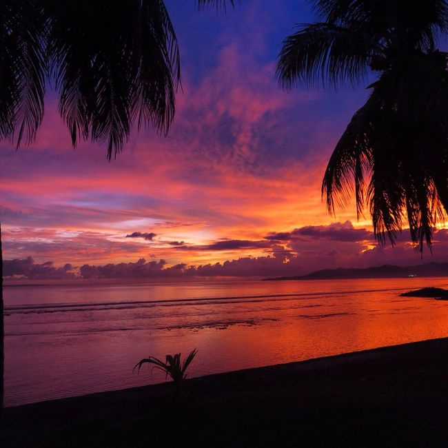Bali Bali, Indonesia Beauty In Nature Candidasa Candidasa Bali Cloud Cloud - Sky Colorful Sky Colorful Sky And Clouds Dramatic Sky Horizon Over Water Idyllic Nature Orange Color Palm Tree Palm Trees Scenics Sea Sky Sunset Tranquil Scene Tranquility Tree Water