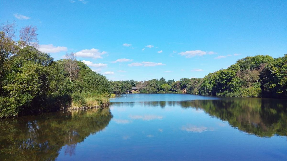 Lake view Reflection Water Blue Lake Tree Nature Sky Landscape Scenics No People Reflection Lake Outdoors Beauty In Nature Day