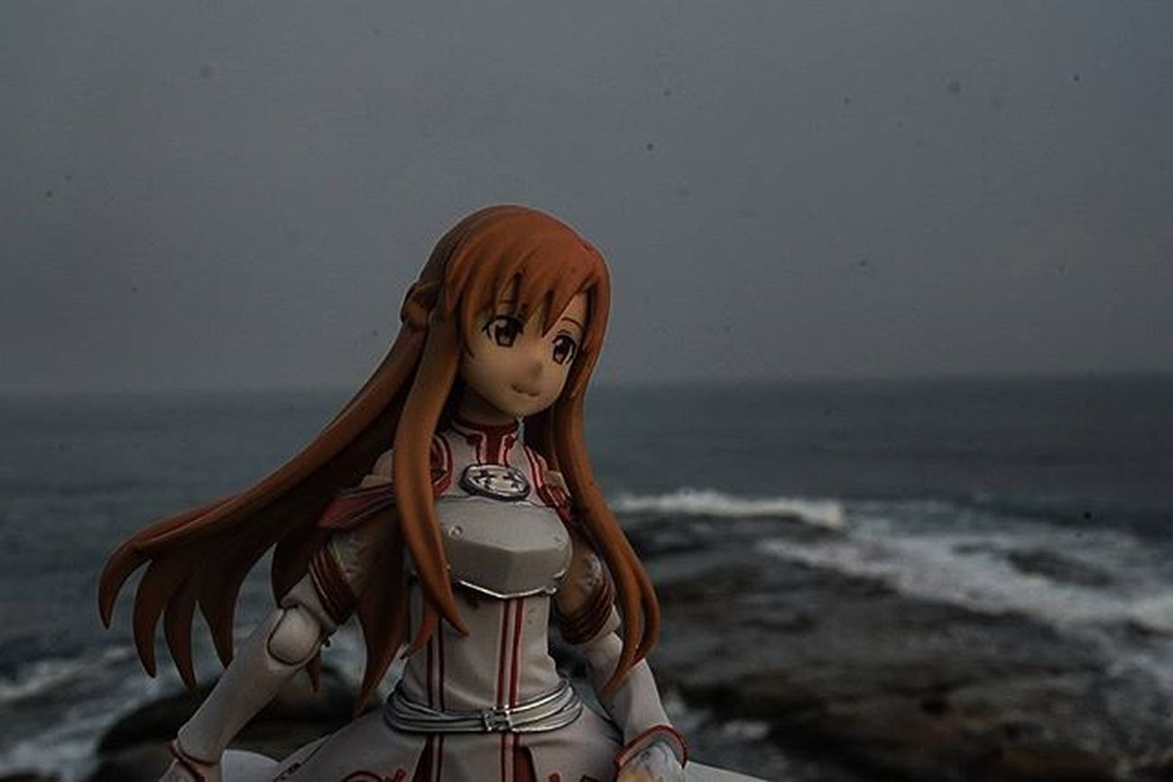 It's getting dark..Sunset fast approaching ..SwordArtOnline Figma Figmaphotographer Asuna Figmaphotography Toysnapshot Figmamalaysia Toyphotography Toyphotographers Toyinstagram Toyphotographer Toycommunity Toycommunities Xperia_knight Sabahroadtrip Sabahroundtrip Sabah