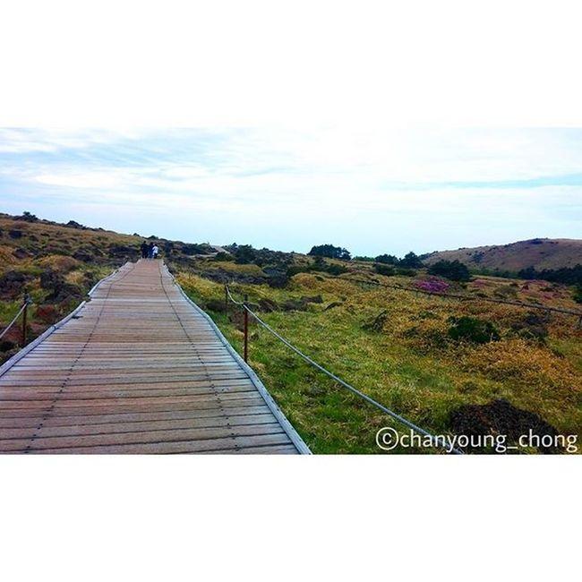 대한민국 제주도 제주 한라산  윗세오름 오름 산 길 여행 사진 Korea Jejuisland Jeju Mountain Hanra Orum Road Travel Travelgram Photo