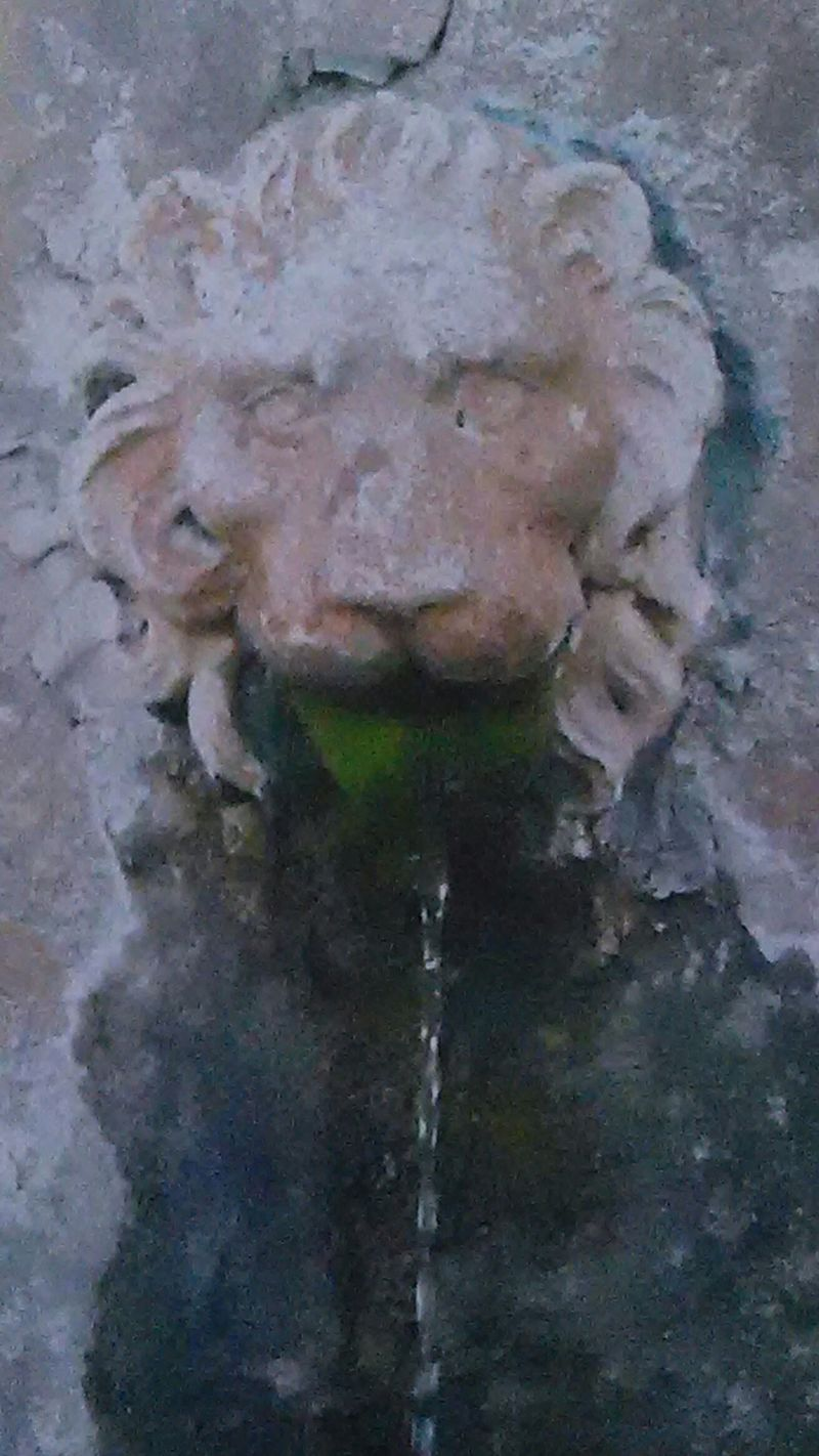 Atlanta Botanical Gardens Atlanta Ga Gardenscapes Lion Head Wall Fountain