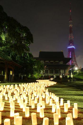 2015  Candle Light Candle Night Candle Night At Zojozi Event Illuminated Japan Lamp Light Night Tokyo キャンドルナイト 増上寺 東京タワー Tokyo Tower Zojoji Temple 天の川 Milky Way River
