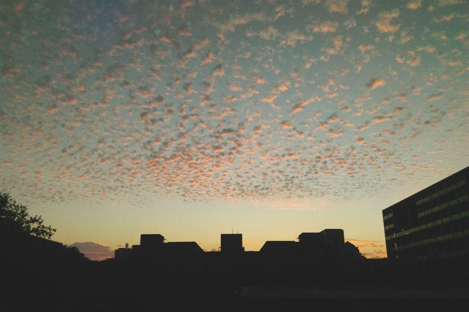 First Eyeem Photo Sky Clouds And Sky Taiwan Taipei City 國立臺灣大學 National Taiwan University