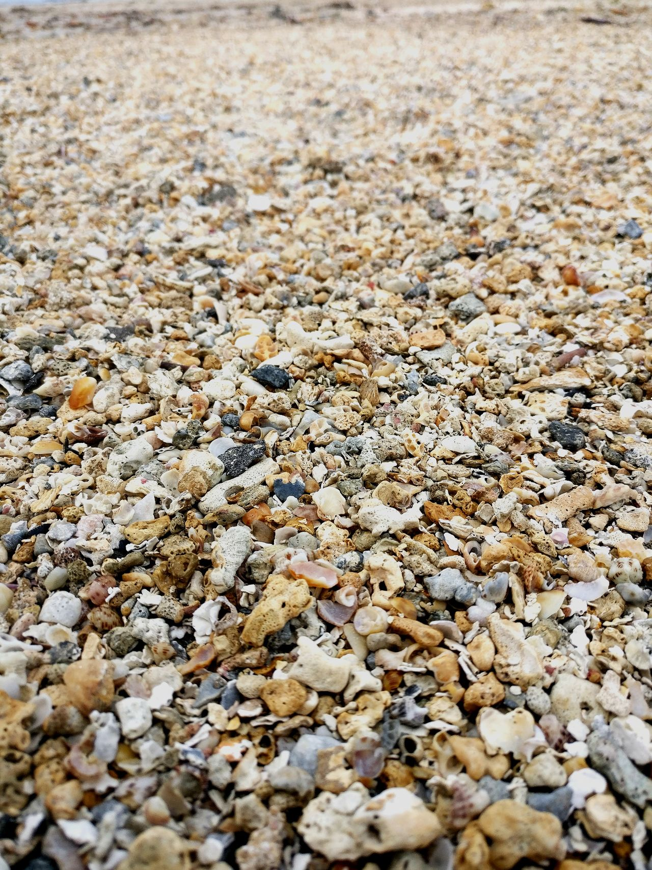 Full Frame Nature Outdoors Day Backgrounds Beach Pebble No People Textured  Tranquility Beauty In Nature Close-up Pebble Beach Boipeba Bahia Brazil