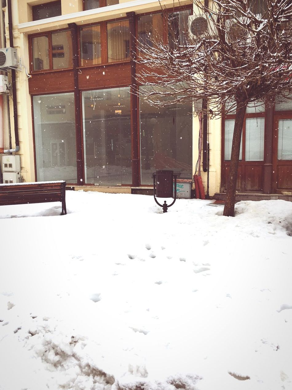 2 Months ✨✨ Snow Winter Cold Temperature Architecture Built Structure Building Exterior Window No People Day Outdoors Snowing Nature