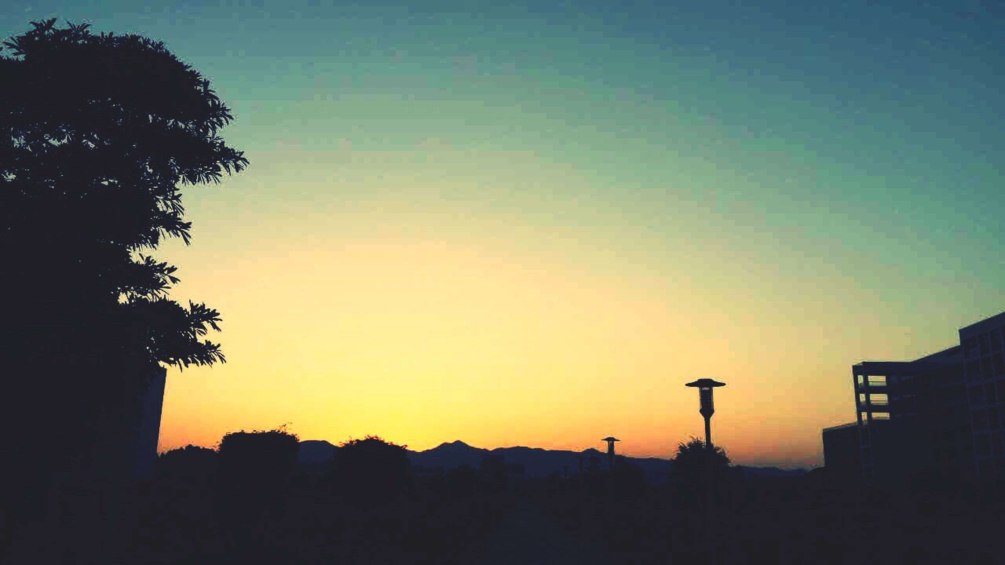 silhouette, sunset, copy space, clear sky, orange color, tree, building exterior, built structure, beauty in nature, architecture, outline, scenics, nature, tranquil scene, tranquility, sky, dusk, low angle view, dark, outdoors