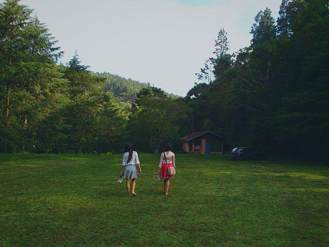 Feel The Journey Nature Sister Camposdojordao