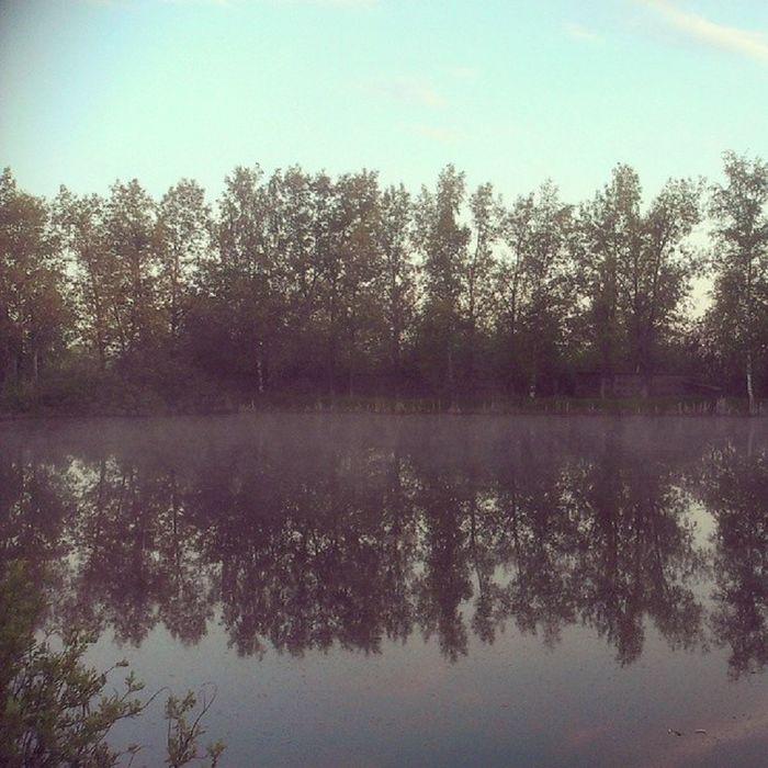 алабино Природа полигон дым над водой