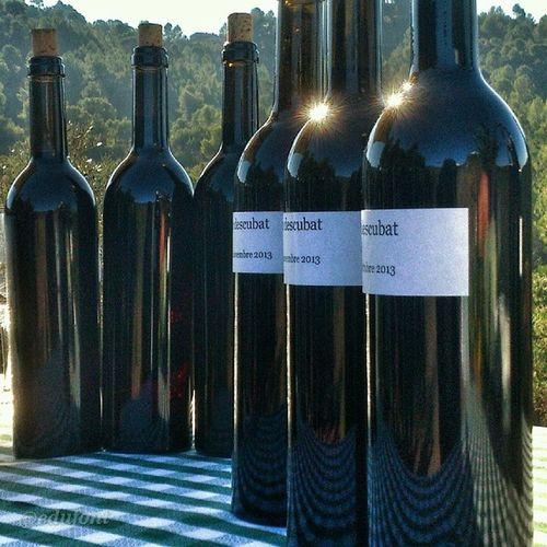 Vi sense acabar. Producte de raïm fermentat a la Tina al mig de la Vinya , a Rocafort Bages vinsdelbages vicatalà. Únic vi fet així, en una construcció de pedra seca única a Europa.