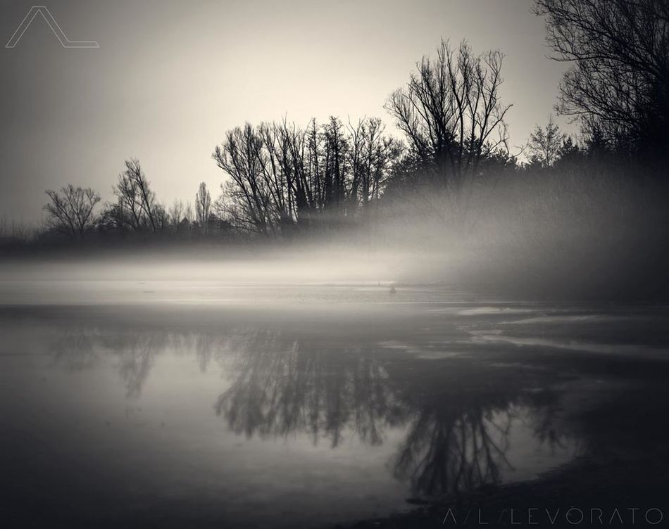 Tree Lake Spooky Fog Nature No People Tranquility Reflection Outdoors Water Day Dreaming Beauty In Nature Silence Landscape Naturelovers Icedlake Misty Misty Morning Blackandwhite Black And White Collection  Dark Darkness And Beauty Gloomy Weather