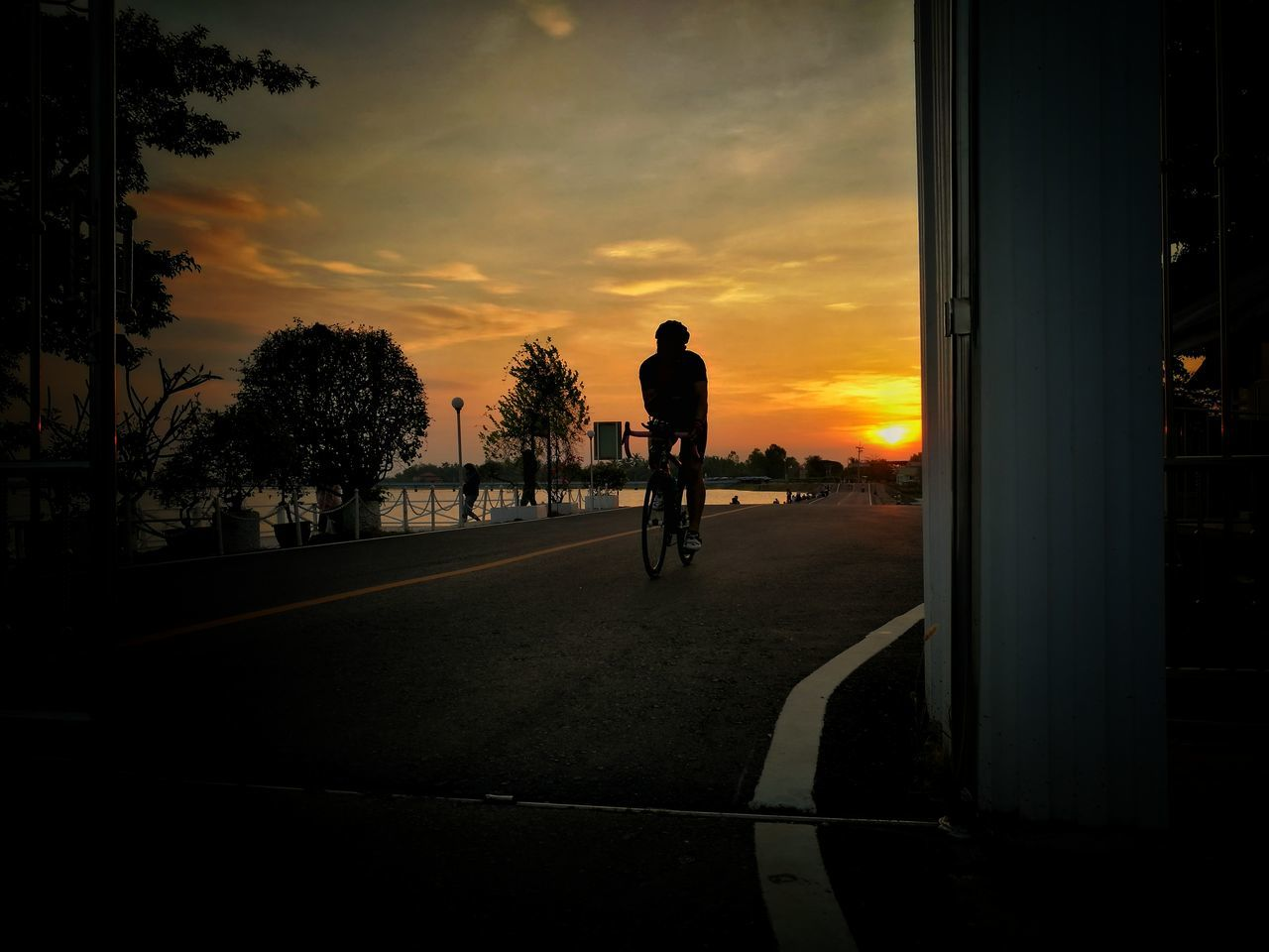Sunset Tree Bicycle Silhouette Full Length Sky City Outdoors People Adults Only Only Men Adult Day Rhino RhinoSurinCyclingClub Sky And Clouds Streetphotography Street Photography Sports Sports Photography