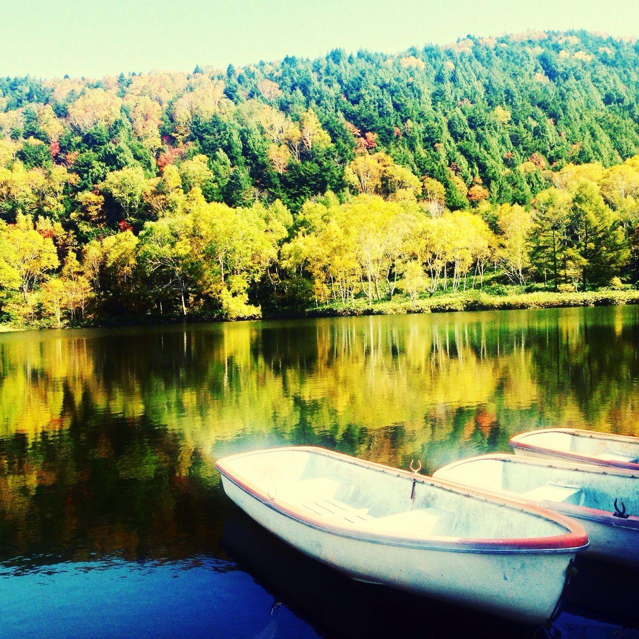 信州志賀高原 木戸池の紅葉 です🍁 2015 10月9日 晴れた美しい湖面です😘 Lake Autumn Amateurphotography Autumn Leaves Forest Beautiful Day EyeEm Best Shots EyeEm Nature Lover Colors Of Autumn EyeEm Best Shots - Nature 山ノ内町