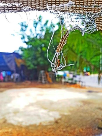 Check This Out That's Me taking small spidy Photo♡