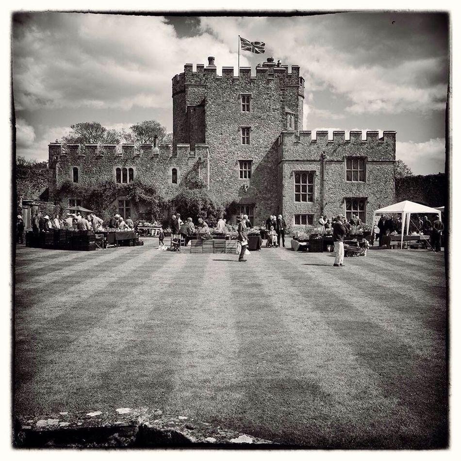 Saltwood Castle Bnw Love Jayne Clarke