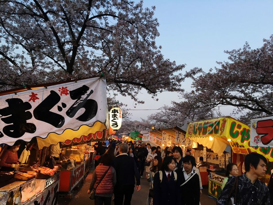 Cherry Blossoms Festival Foodstand Springfestival Japan Tenmabashi Tree City Outdoors Night Japan Photography IPhone
