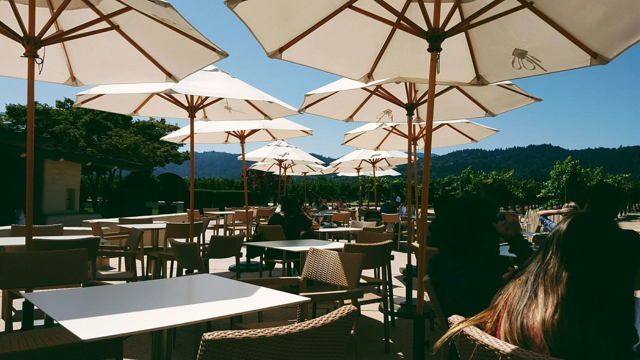🍷Winetasting at the beautiful Robertmondavi winery. Winery Ñapa StHelena Mondavi MondaviWine