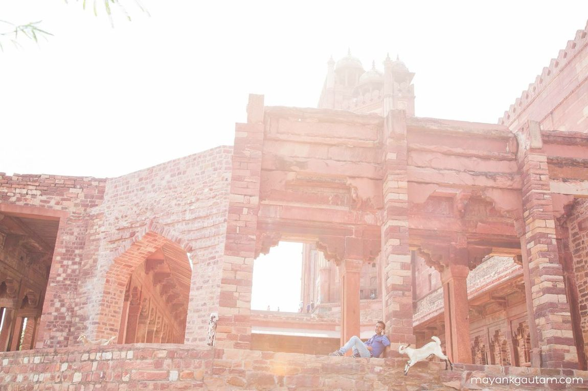 Seeing The Sights Fatehpur Sikri Agra India Historical Monuments World Heritage Heritage Building Here Belongs To Me Photography In Motion Things I Like My Favorite Photo The Street Photographer - 2016 EyeEm Awards The Photojournalist - 2016 EyeEm Awards Original Experiences Feel The Journey Fatehpursikri Home Is Where The Art Is Two Is Better Than One TakeoverContrast