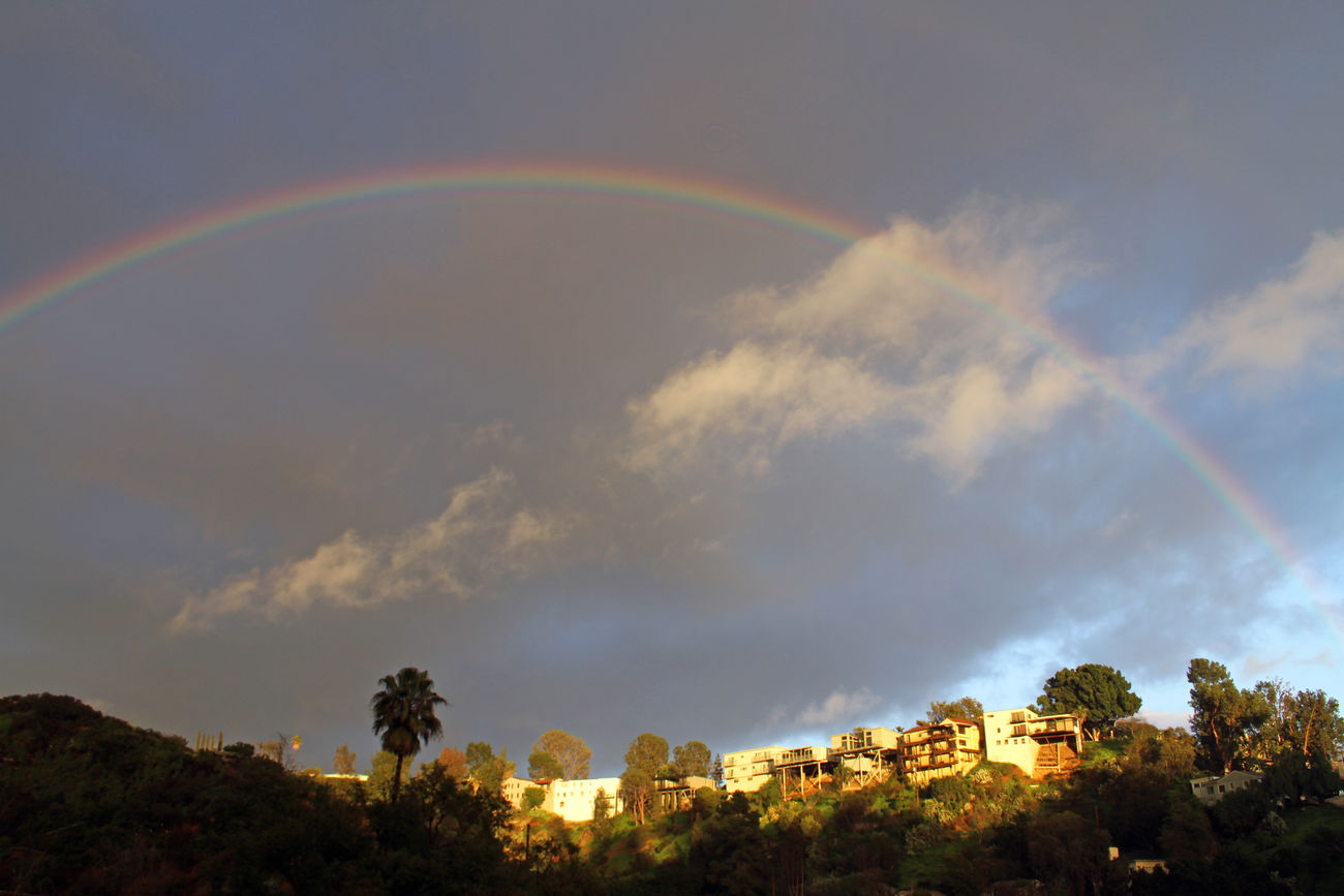 Beauty In Nature California City Cliff Cliffs Cloud - Sky Day Double Rainbow Nature No People Outdoors Palm Palm Tree Palms Rainbow Scenics Sky Tree