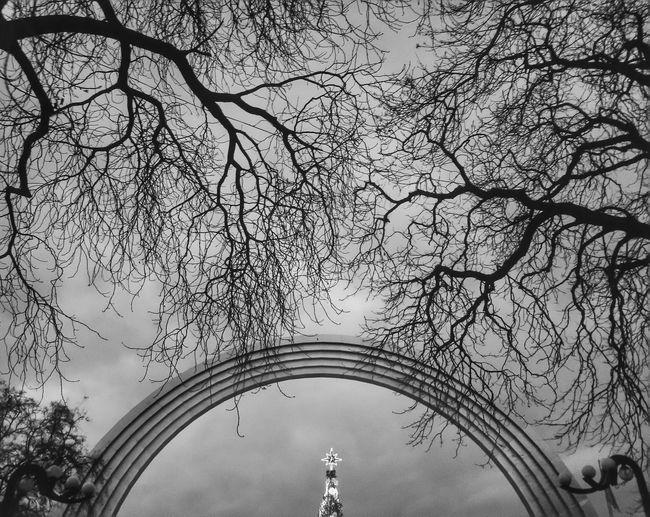 Арка дружбы народов. Киев Чб чернобелое черно-белое деревья арка черно-белое фото Bw Monochrome Trees Inspiration