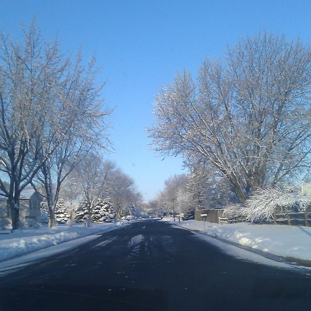 I'd say this is beautiful if it wasn't almost May... Ha Minnesnowta Skyshot Skyviewers Frost nospringhere