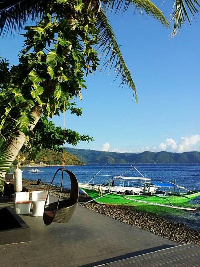 Anilao, Batangas Island Life Enjoying Life Blue Skies ⛅ Sun And Sea Boats And Water Tree Swing Chilling