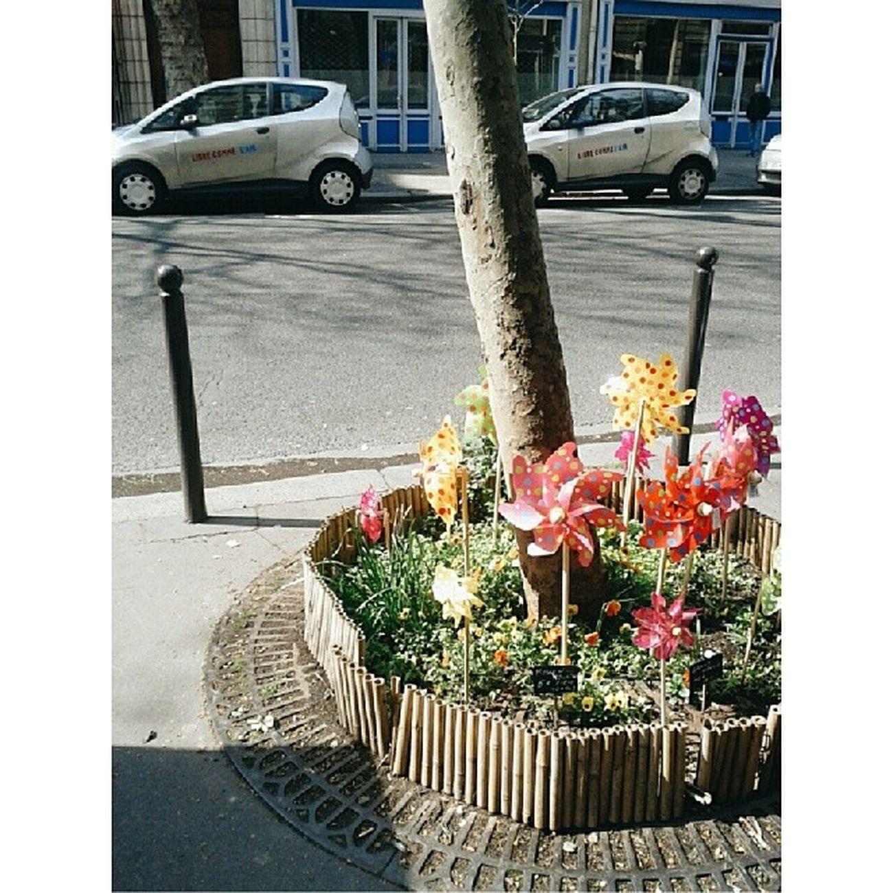 Petitjardinet  écologique Autolib Paris fleuriste faidherbe