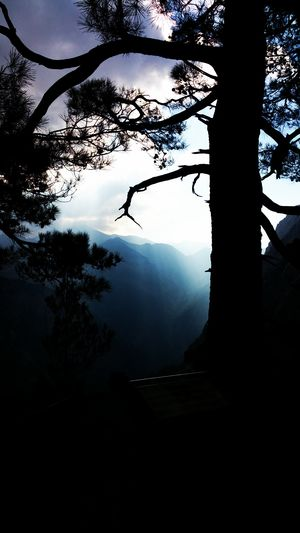Blaze Darkness And Light Fog Haze Hike Idyllic Light And Shadow Majestic Morning Morning Light Mountain Mountain Range Mountains Mountains And Sky Natural Beauty Nature Nature Photography Nature_collection Naturelovers Scenics Silhouette Solitude Tranquil Scene Tranquility Tree