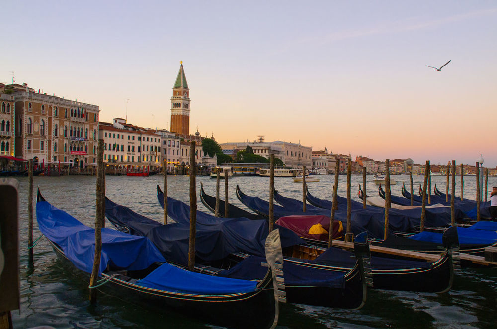 Architecture Building Exterior Built Structure City City Europe Gondola Gondola - Traditional Boat Italy Mode Of Transport Moored Nautical Vessel No People Outdoors Place Of Worship Religion Sky Spirituality Transportation Travel Travel Destinations Venice Venice, Italy Water Wooden Post