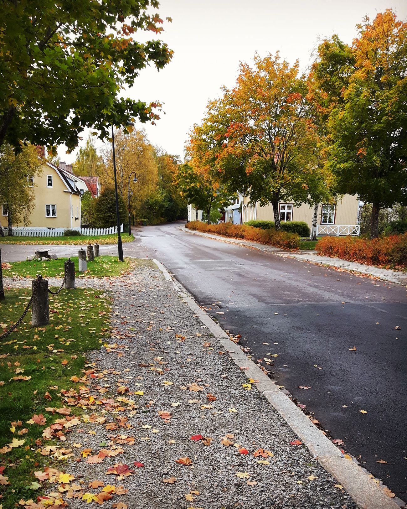 In Smedjebacken Dalarna, Sweden. Was there to visit my grand parents. Its nice to know that you have family that no matter what will always have room for you Street Outdoors Road No People Love Life Love Life Is Adventure Funtimes Explore Discover Pursue Family Dalarna Sweden Autumn Autumn Colors