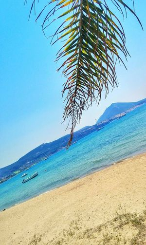 Beach Nature Sand Beauty In Nature Sky Sea Blue Outdoors Day Horizon Over Water Water Scenics Clear Sky No People Tree Greece Costanavarino Clear Sky Sun Boat