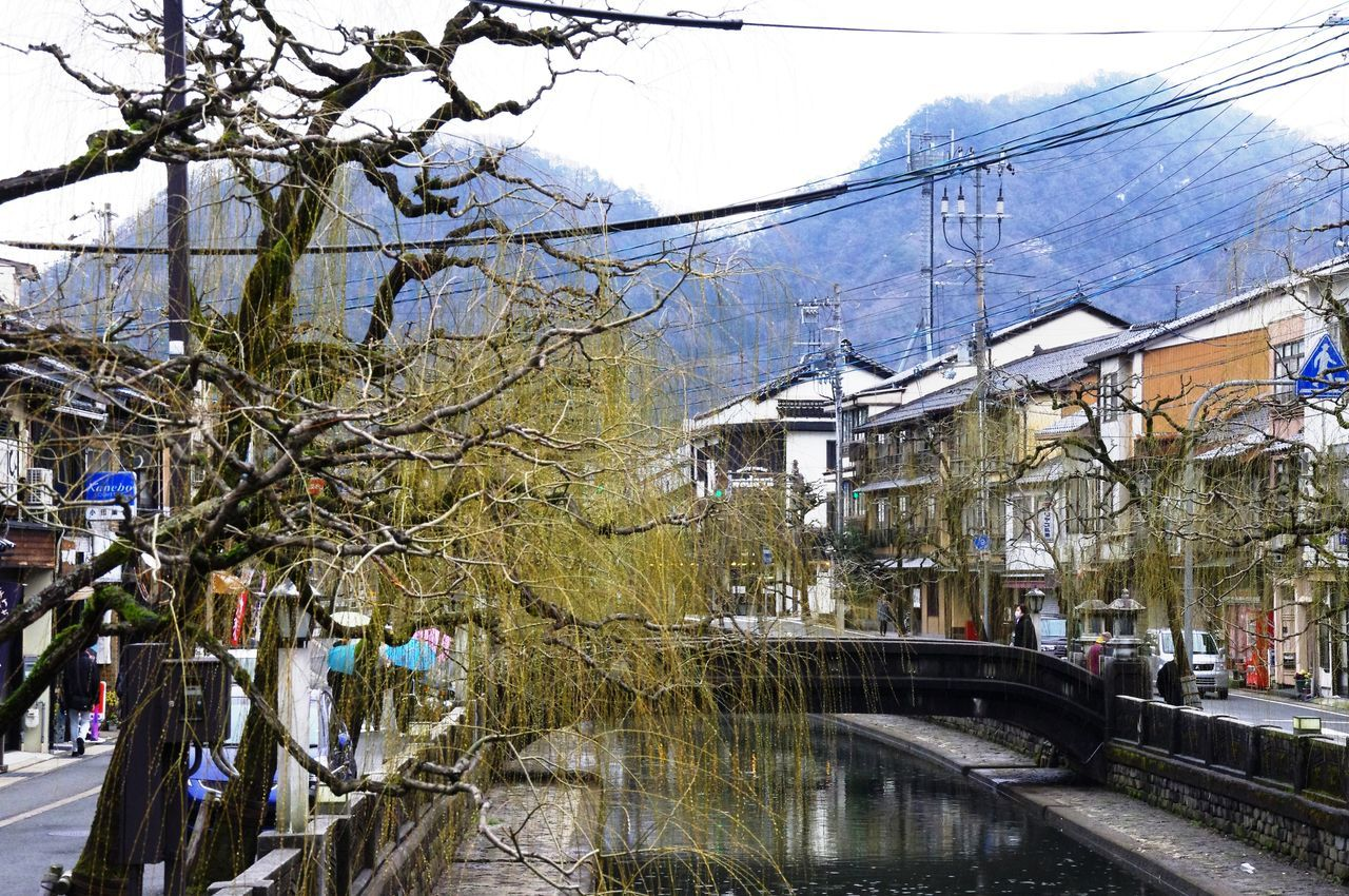 Cold Temperature Crossing The Bridge Hills Japan Kinosaki Onsen Onsen Pretty Town Snow ❄ Tree Trunk Winter