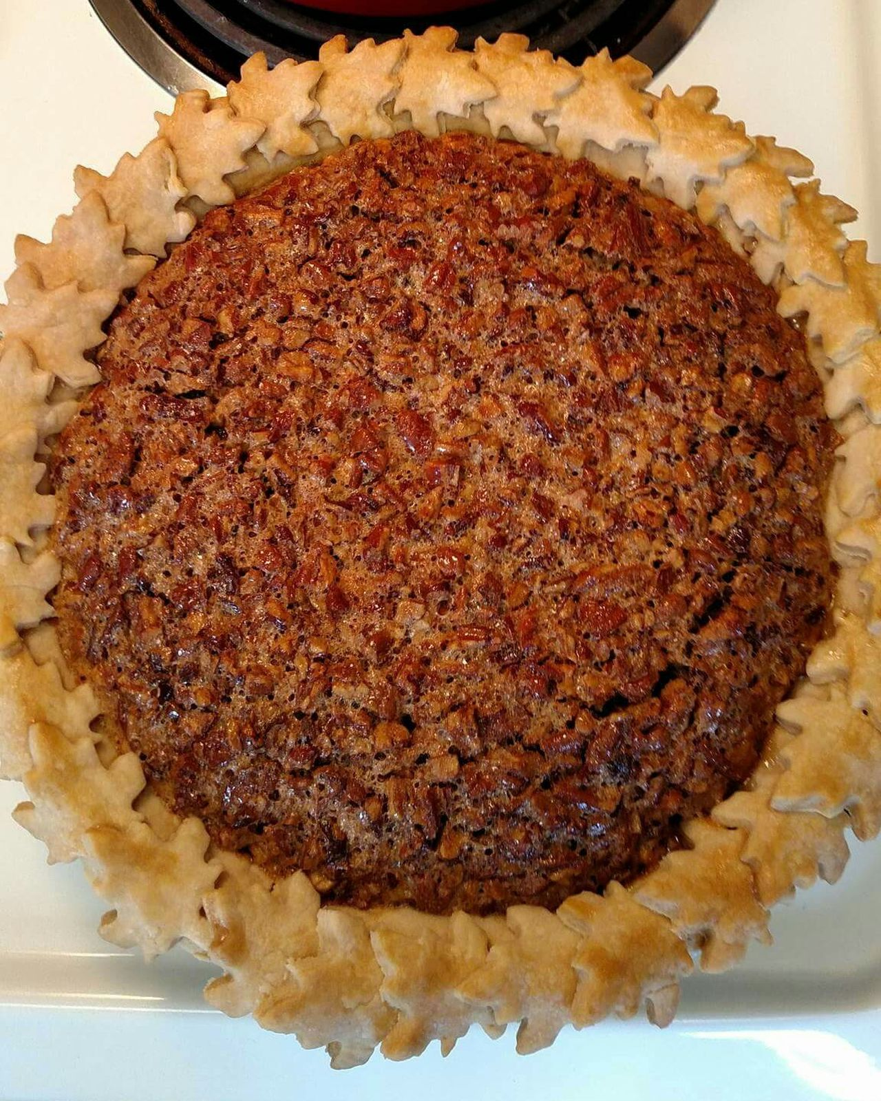 Foodporn Foodphotography My World Of Food Yummy Food Photography Things I Love The Purist (no Edit, No Filter) Food Porn Homemade Pie Homemade Happy Thanksgiving Pecan Pie