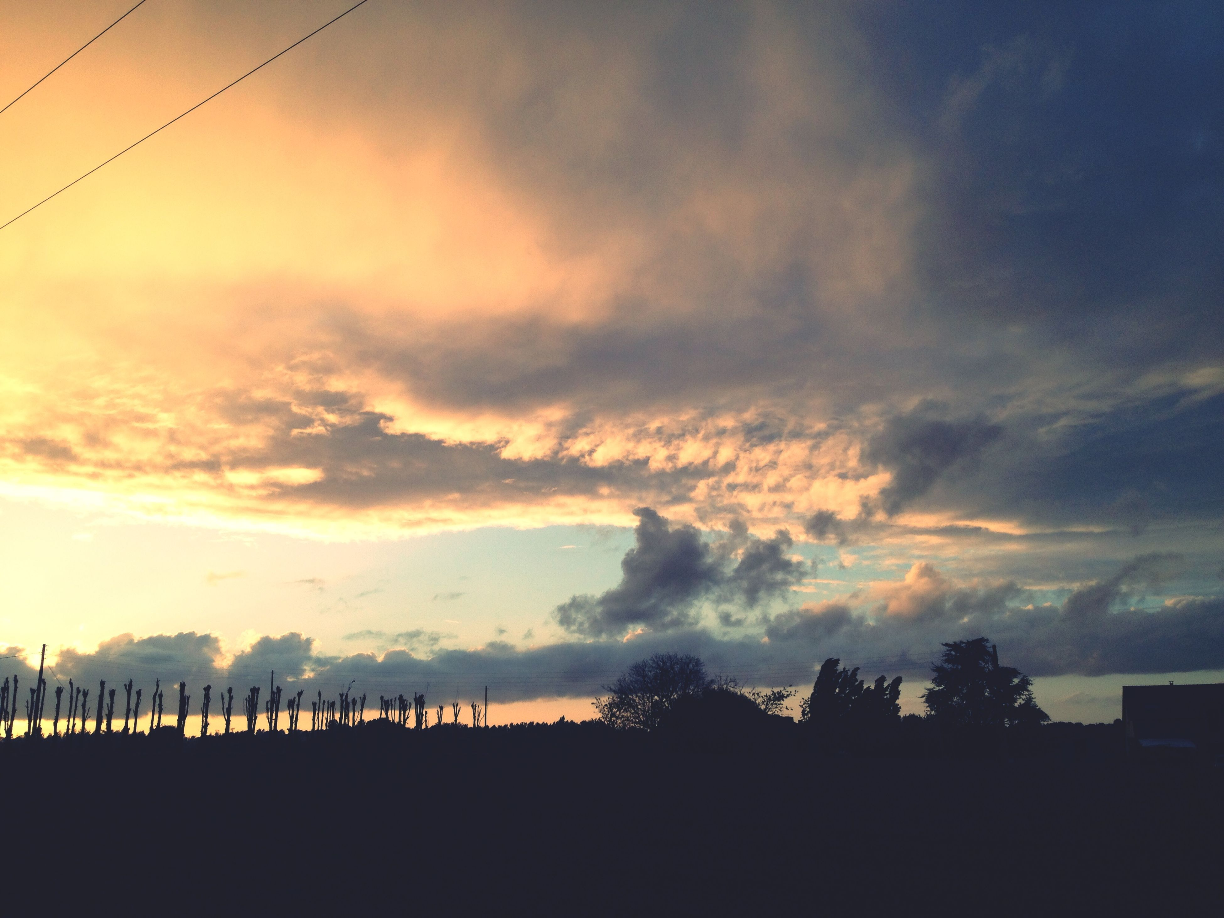 sky, sunset, silhouette, tranquil scene, cloud - sky, scenics, tranquility, beauty in nature, landscape, nature, cloud, field, cloudy, idyllic, outdoors, no people, rural scene, dusk, tree, non-urban scene