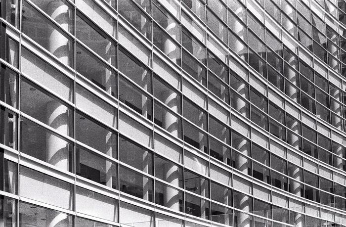 Federal Courthouse - Buffalo, NY Architecture Monochrome EyeEm Bnw Blackandwhite Analogue Photography Film Istillshootfilm Analog Buffalony Building Rodinal TriX400 Fresh On Eyeem  Olympus OM 10 The Architect - 2016 EyeEm Awards Fine Art Photography