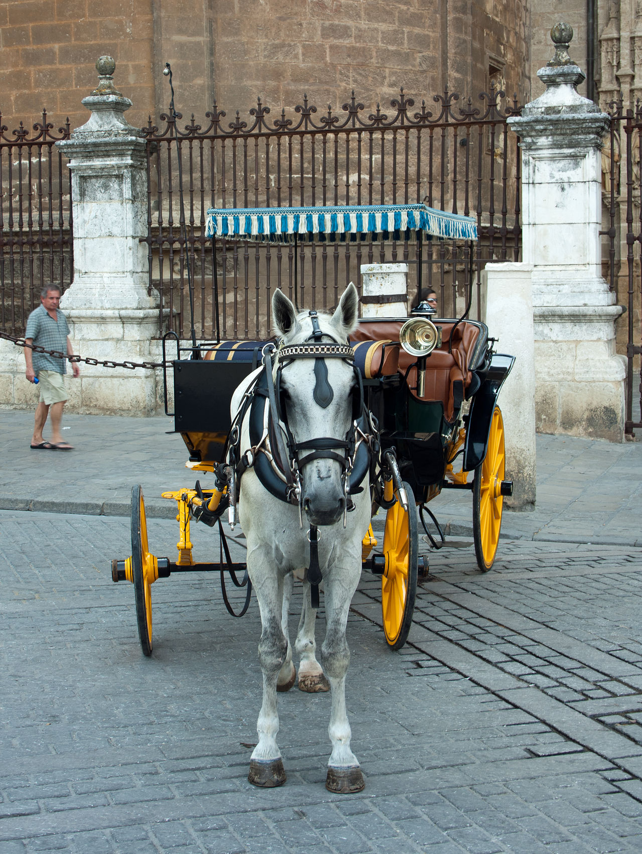 Horse and carriage ride in Sevilla, Spain Animal Themes Animals At Work Cart Culture Day Grey Horse Grey Horse And Carriage Grey Working Horse Horse Horse And Carriage Horse And Cart Lifestyles One Animal Sevilla Sevilla Carriage Togetherness Transportation Working Animal Working Horse Working Horses